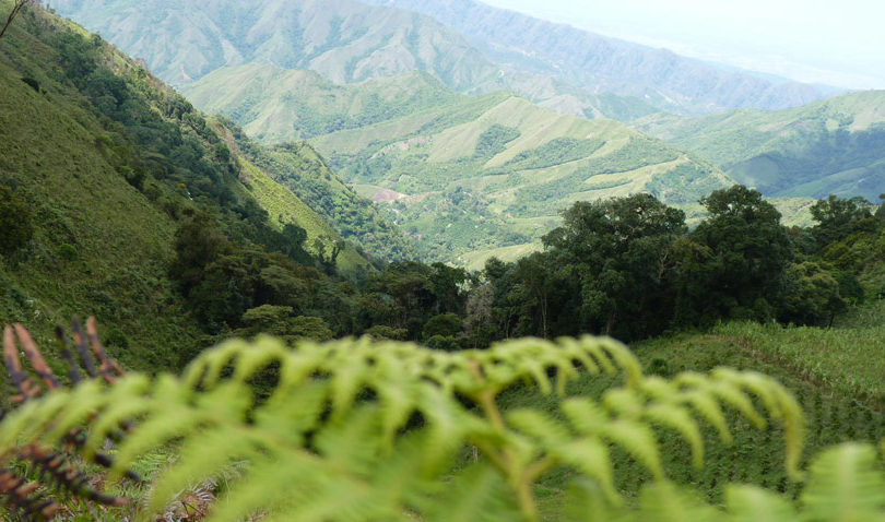 Cliffmont Resources Ltd. - Exploring for Colombia's next high-grade gold property