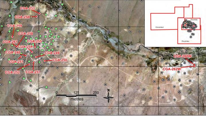 GRG Golden Arrow Resources Chinchillas